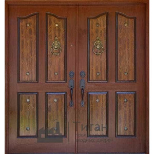 Дверь ДПП-02